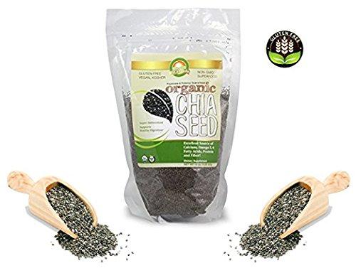 VitaPride Certified Black Organic Chia Seeds 1.0lbs, Gluten-Free, Vegan, Kosher, Non-GMO, Super Antioxidant(16oz/453g)