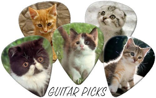 Cute Kittens (Cats) Full Colour Premium Guitar Picks x 5 Medium 0.71 Printed Guitar Picks