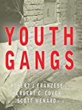 Youth Gangs, Franzese, Robert J. and Covey, Herbert C., 0398076839