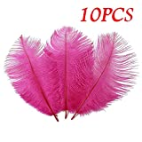 Clearance Tuscom 10Pcs Solid Color Party Fun Feathers for Wedding Parties Hotel and Home Decoration (10 Colors) (Hot Pink)