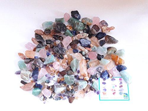 PARTY EXTRAVAGANZA TREASURE BOX Home Gem Mining Kit 22,000+ Carats of Gems by Randall Glen Gem Mine (Image #4)
