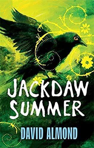 book cover of Jackdaw Summer