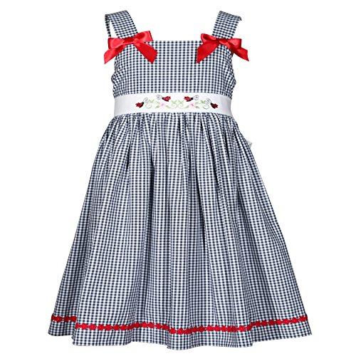 Treasure Box Kids Girls Blue and White Gingham Ladybug Dress-4 Toddler