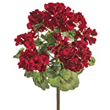 18 Inch Geranium Bush Red