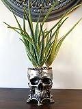 Human Skull Planter, Pewter Finish