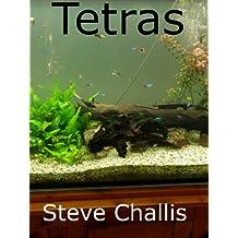 Tetras