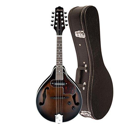 Ibanez Electric Violin - 5