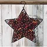 Heart of America Wire Mesh Star with Cranberry Potpourri 9''