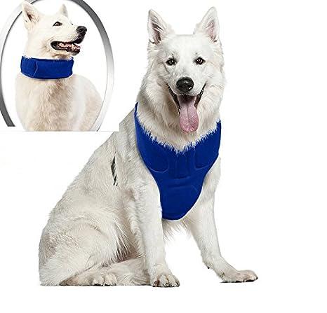 DavidLee Arnés de refrigeración para perro y chaleco para mascotas ...