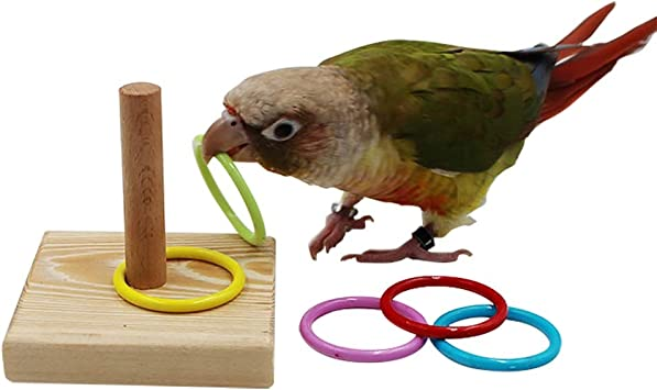 KJ-KUIJHFF Parrot Birds Educational Interactive Toy Random Tip Parrots Bird Training Puzzle Intelligence Development Toys
