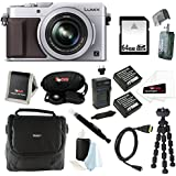 Panasonic LUMIX LX100 16.8 MP Point and Shoot Camera with Integrated Leica DC