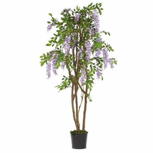 5' Silk Wisteria Tree