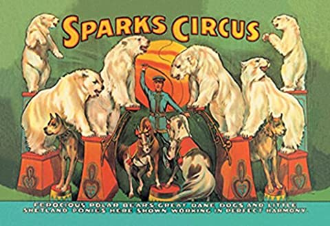 Buyenlarge Sparks Circus Ferocious Polar Bears, Great Dane Dogs And Little Shetland Ponies Here Shown Working in Perfect Harmony Wall Decal, 48