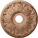 Ekena Millwork CMW16FLRO 16-Inch OD x 3 7/8-Inch ID x 1 1/8-Inch P Carved Florentine Ceiling Medallion, Red Oak