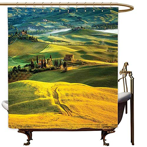 SKDSArts Shower Curtains Turquoise and Gray Tuscan,Idyllic Landscape of Tuscany Road and Cypresses to Medieval Farmhouse Image,Mustard and Green,W65 x L72,Shower Curtain for Small Shower stall