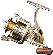 Diwa Spinning Fishing Reels for Saltwater Freshwater 1000 2000 3000 4000 5000 6000 Series Fishing Spool Left/R