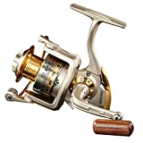 Diwa Spinning Fishing Reels for Saltwater Freshwater 1000 2000 3000 4000 5000 6000 Series Left/Right Interchangeable Trout Spinning Reel Carp Fishing Reels 10 Ball Bearings Light and Smooth (1000)
