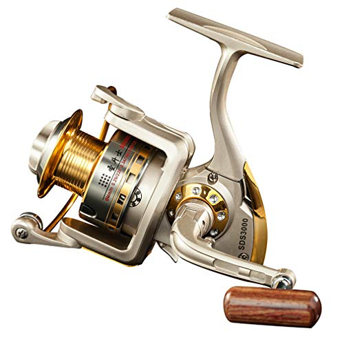 Diwa Spinning Fishing Reels for Saltwater Freshwater 1000 2000 3000 4000 5000 6000 Series Left/Right Interchangeable Trout Spinning Reel Carp Fishing Reels 10 Ball Bearings Light and Smooth (6000)