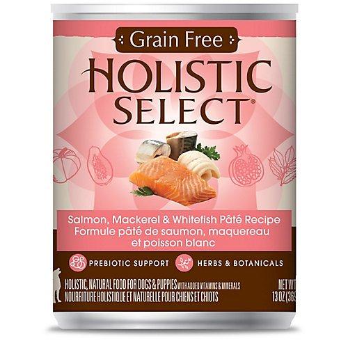Holistic Select Grain Free Salmon Can Dog Food, Large