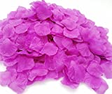 CODE FLORIST 2200 PCS Silk Flower Rose Petals for