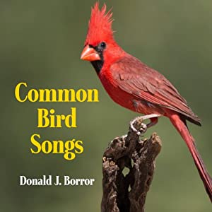 Common Bird Songs Audiobook
