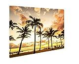 Ashley Giclee Metal Panel Print, Gorgeous Colorful Golden Hour Sunset At Waikiki Beach In Honolulu Hawaii, 16x20, AG6402250