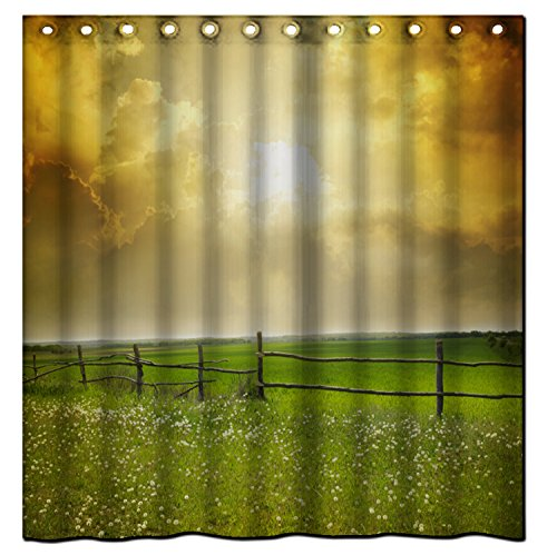 saxon-case-best-christmas-giftvast-steppe-in-the-summer-shower-curtain-100-polyester-fabric-standard