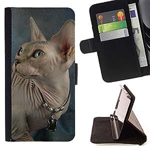 Momo Phone Case / Flip Funda de Cuero Case Cover - Peterbald Donskoy Gato sin pelo; - LG Nexus 5 D820 D821