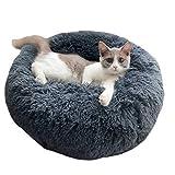 Pet Beds Review and Comparison