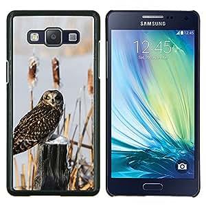 Qstar Arte & diseño plástico duro Fundas Cover Cubre Hard Case Cover para Samsung Galaxy A5 A5000 (Curioso búho de la nieve)