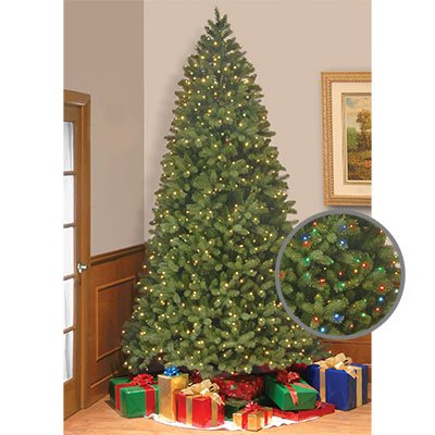 """""""Feel-Real"""" Bayberry Spruce Hinged - 2.74 M (9 Ft.) €� €�Feel-Real"""" Bayberry Spruce Hinged Tree With Dual"""