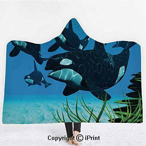 Whale 3D Print Soft Hooded Blanket Adult Premium Throw Blanket,Lightweight Microfiber,Pod of Killer Whales Swim Along a Reef Looking For Fish Prey Ocean Picture Print,All Season for Adult(60