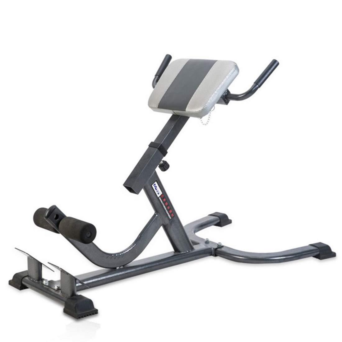 UICICI Rome Chair/Gym Chair, Bauchgerät, Bauchmuskelsessel, Fitnessgeräte/geeignete  Herrenchenmenge: Fitnessbegeisterte, Geschäftsleute.
