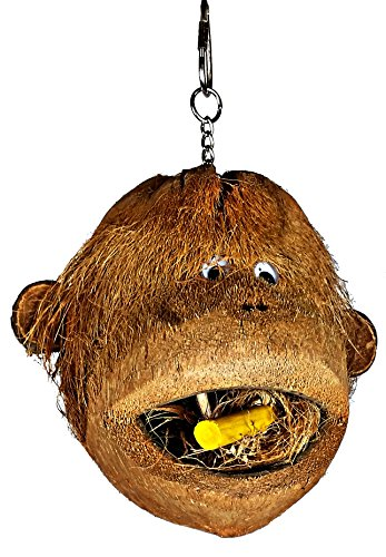 Coco Head Bird Foraging Toys (Monkey Coco Head)