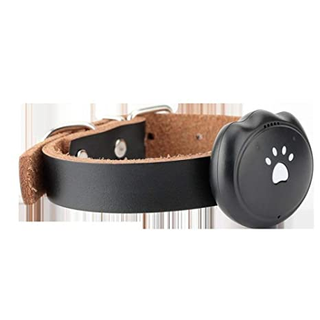 CWDIER Anti-perdida Perro Gato Collar GPS Buscador de ...