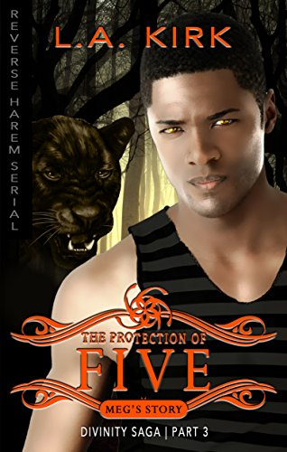 The Protection of Five: Reverse Harem Serial (Divinity Saga: Mega's Story Book 3)