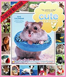Cute Overload 2012 Wall Calendar: 365 Days of Impossibly Cute Photos