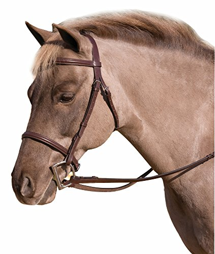 CLUB FANCY RAISED SNAFFLE BRIDLE W/LACED REINS, OAKBARK, PONY (Fancy Pony)
