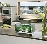 Fluval Edge Aquarium Set, 6-Gallon