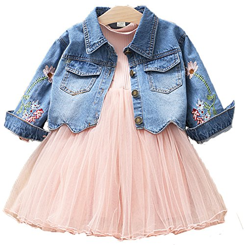 Spring Autumn Little Girls Clothing Set Child Kids Denim Jacket and Long Sleeve Dress 2 Pieces Set (2T, Pink)