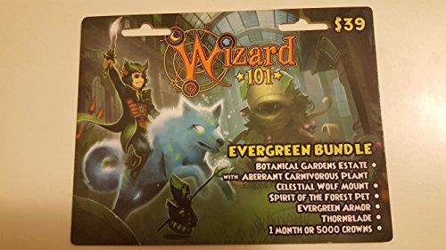 Wizard 101 Evergreen Bundle Prepaid Game Card - Buy Online in UAE