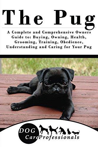 Pug Dog Breeds - 5