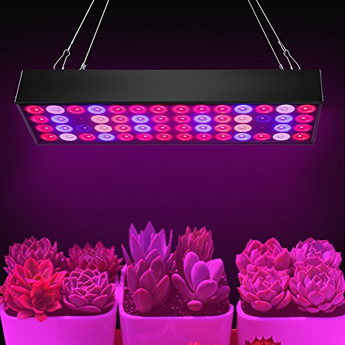 36W Full Spectrum LED Grow Light with UV & IR,No Noise Led Grow Light Bulb with Daisy Chain for Indoor Plants.Cool When Running,Energy-efficient,Works for All Stages by Antievening (Image #7)'