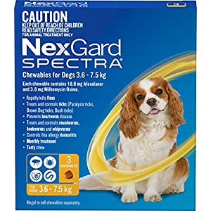 Nexgard N5836 Flea, Tick & Worming Monthly Chew, Spectra, Dog, 3.6-7.5kg, 3pk, Yellow, Small Click on image for further info.