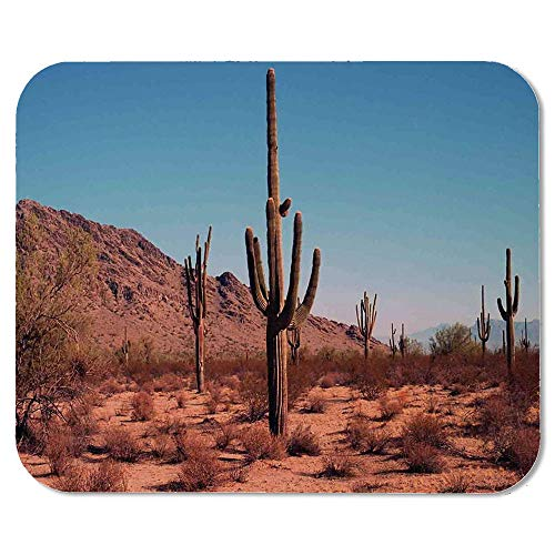 - Saguaro Cactus Decor Wristband Mouse Pad,Grown Prominent Cacti with The Spines Hardy Plants Clear Sky Landscape Picture for Home Desk Computer Desk,7.87''Wx9.45''Lx0.08''H