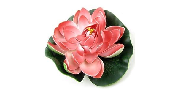 Amazon.com : eDealMax Flor del agua espuma del tanque de pescados de la decoración de la planta, DE 6, 3 pulgadas de diámetro Verde/Rojo : Pet Supplies
