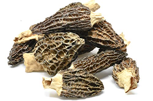 Dried Morel Mushrooms by Slofoodgroup (Morchella Conica) Gourmet Morel Mushrooms Various Sizes of Morels Available (15 Morel Mushrooms) (Best Way To Find Morel Mushrooms)