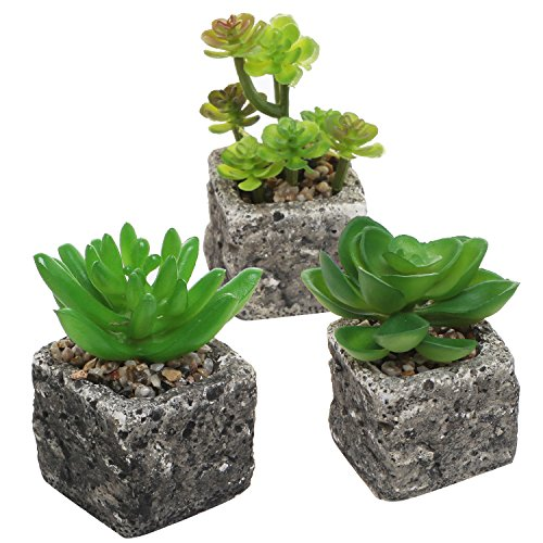 Set of 3 Decorative Green Realistic Mini Succulent Plants w/ Brown Stone Pots - MyGift