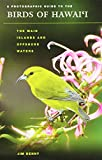 A Photographic Guide to the Birds of Hawai'i: The Main Islands and Offshore Waters (Latitude 20 Books (Paperback))