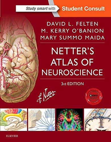 Netter's Atlas of Neuroscience, 3e (Netter Basic Science)